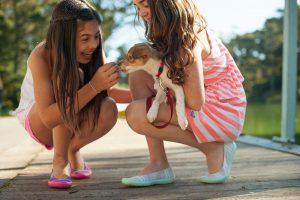 חבר על ארבע למה כדאי לאמץ כלב